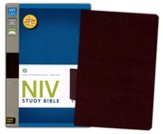 NIV Study Bible, Bonded Leather, Burgundy, Thumb Indexed - Slightly Imperfect