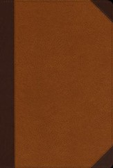 NIV Zondervan Study Bible, Large-Print; Soft Leather-look, Chocolate/caramel