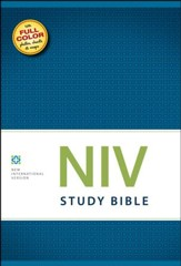 The NIV Study Bible
