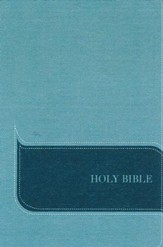 NIV Understand the Faith Study Bible--imitation leather, turquoise