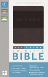 NIV Value Thinline Bible--soft leather-look, charcoal/black