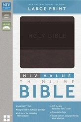 NIV Value Thinline Large-Print Bible--soft leather-look, charcoal/black