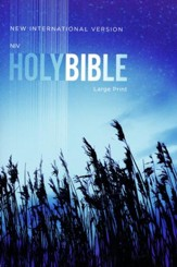 NIV Large-Print Outreach Bible--softcover, blue wheat
