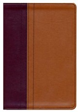 NIV, Quest Study Bible, Imitation Leather, Burgundy and Tan, Thumb Indexed