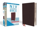 NIV Thinline Bible Large Print Burgundy, Bonded Leather, Indexed