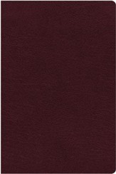 NIV Comfort Print Biblical Theology Study Bible, Bonded Leather, Burgundy, Indexed