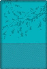 Biblia de la Mujer Conforme al Corazon de Dios, RVR 1960, Aqua  (Bible for Women After God's Own Heart, RVR 1960, Turquoise)