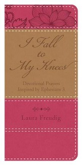 I Fall to My Knees: Devotional Prayers Inspired by Ephesians 3 - eBook