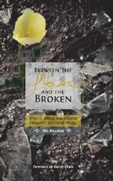 Between The Flowers And The Broken: Stories, Songs, And Lessons From The Streets Of Brazil - eBook