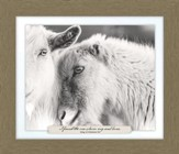 I Found the One Whom My Soul Loves, Song of Solomon 3:4, Goat Farm, Framed Art