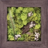 The Peace of God Biophilic Framed Art