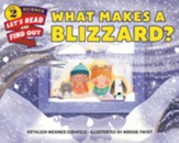 What Makes a Blizzard?, softcover