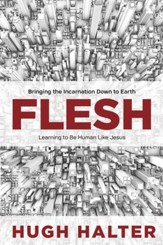 Flesh: Bringing the Incarnation Down to Earth - eBook