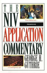 Hebrews: NIV Application Commentary [NIVAC]