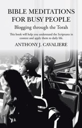 Bible Meditations for Busy People: Blogging through the Torah - eBook