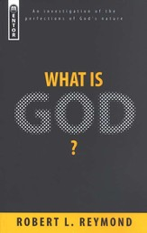 What Is God? An Investigation of the Perfections of God's Nature