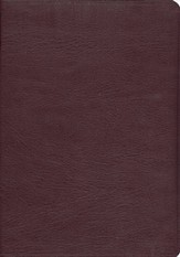 ESV Study Bible--Genuine leather, Burgundy