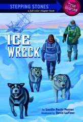 Ice Wreck - eBook