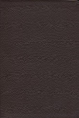 NKJV Word for Today Bible - genuine leather, burgundy-brown indexed