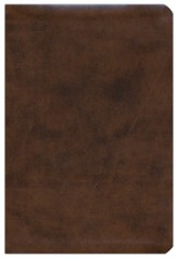 ESV Compact Bible--soft leather look, brown