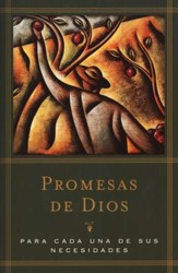 Promesas de Dios para cada una de sus necesidades  (God's Promises For Your Every Need)