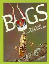 Bugs: Big & Small God Made Them All