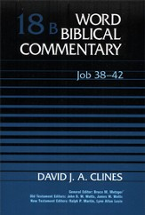 Job 38-42: Word Biblical Commentary [WBC]