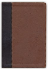 ESV Verse-by-Verse Reference Bible (TruTone, Brown/Cordovan, Portfolio Design)
