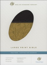 ESV Large Print Bible--soft leather-look, coffee with gold band design