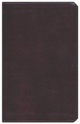 ESV Large Print Personal Size Bible--soft leather-look, mahogany