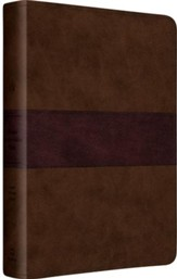 ESV Gospel Transformation Bible (TruTone, Chocolate/Plum, Trail Design)
