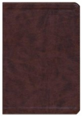 ESV Wide Margin Reference Bible (TruTone, Brown), Imitation Leather
