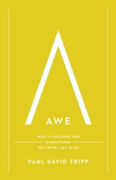 Awe: Why It Matters for Everything We Think, Say & Do