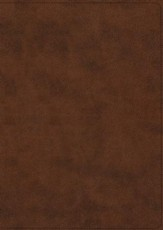 ESV Archaeology Study Bible (TruTone Imitation Leather, Brown) - Slightly Imperfect