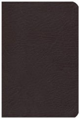 KJV The Woman's Study Bible, Bonded leather, burgundy indexed
