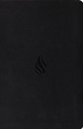 ESV Premium Gift Bible, Imitation Leather, Black w/ Flame Design