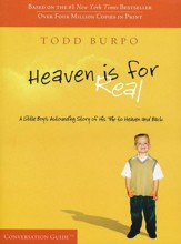 Heaven is For Real, DVD-Based Conversation Kit - Slightly Imperfect