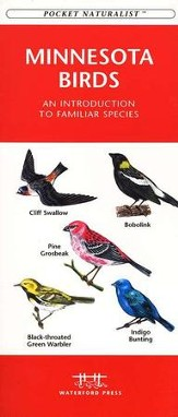 Minnesota Birds