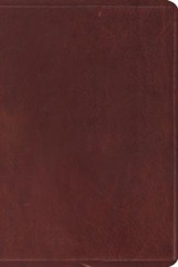 ESV Study Bible, Personal Size , Natural Leather, Brown - Imperfectly Imprinted Bibles