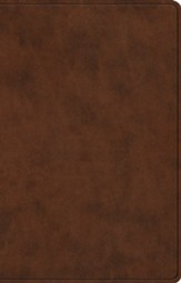 ESV Premium Gift Bible (TruTone, Brown) Imitation Leather