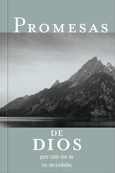 Promesas De Dios Para Cada Una De Tus Necesidades, God's Promises For Your Every Day Need - eBook