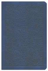 The Passion Translation (TPT): New Testament with Psalms,  Proverbs and Song of Songs - 2nd edition, large print,  imitation leather, navy blue