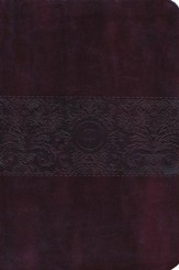 The Passion Translation (TPT): New Testament with Psalms, Proverbs, and Song of Songs - 2nd edition, large print, imitation leather, burgundy