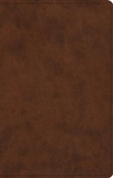 ESV UltraThin Bible, TruTone, Brown