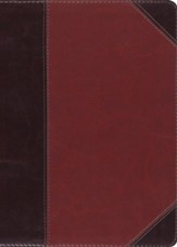ESV MacArthur Study Bible (TruTone Imitation Leather, Brown/Cordovan, Portfolio Design)