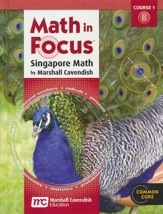 Math in Focus Grade 6 Course 1 Student Book B