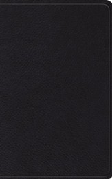 ESV Thinline Bible--top-grain leather, black