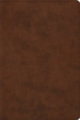 ESV Reader's Bible--soft leather-look, brown