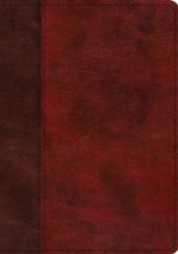 ESV Study Bible--soft leather-look, burgundy/red with timeless design (indexed)