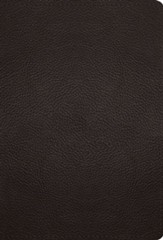 ESV Large-Print Compact  Bible--buffalo leather, deep brown